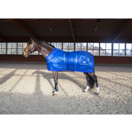 Accuhorsemat Original (with acupressure)