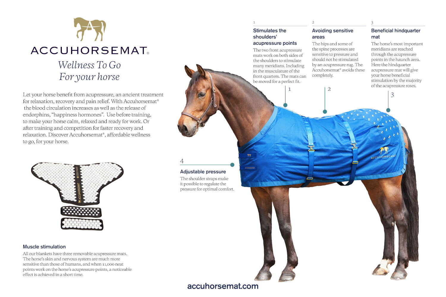 For the horse - accuhorsemat